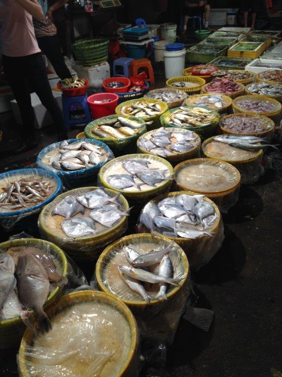 So many variety of fish from the sea... I was based in Suzhou, only get fresh water ones and full of bones!