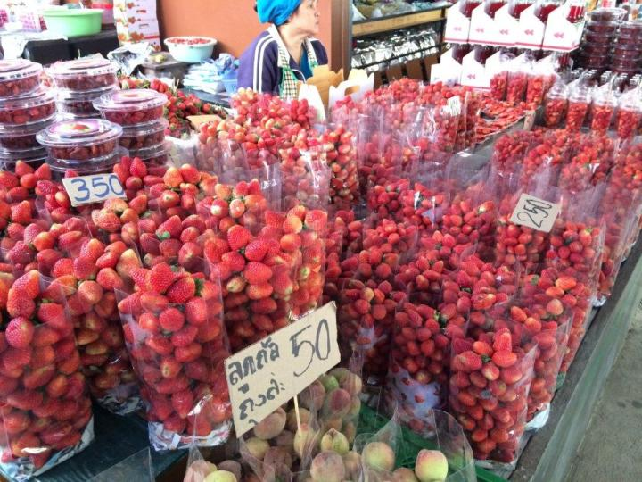 Strawberries galore! Not sweet and quite sour.