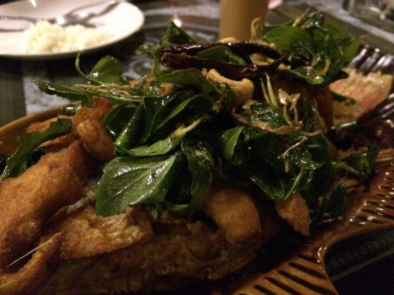 Fried fish with basil was pretty good as well!