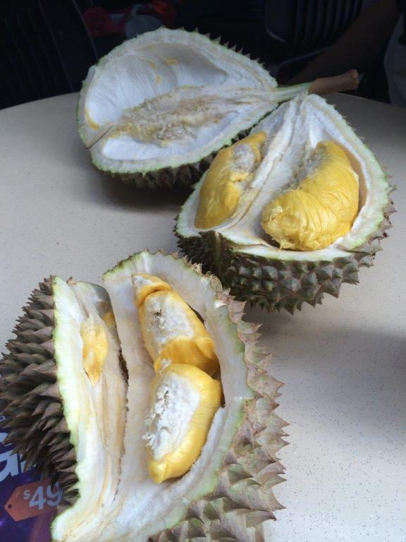 Our 3 durians
