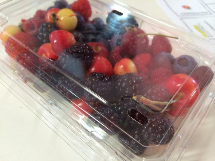 Some berries available for picking