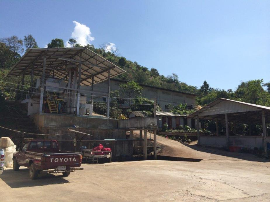 Doi Chang Coffee Farm's milling facility