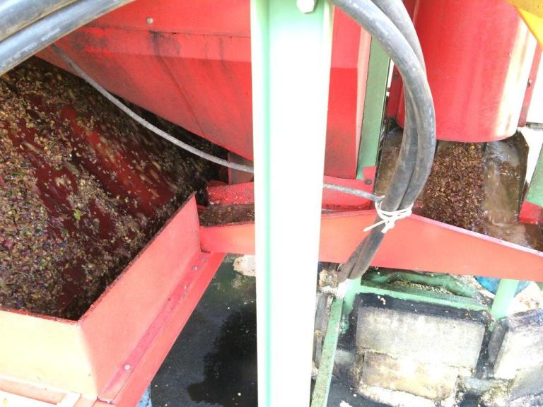 See the cherries being separated from the beans