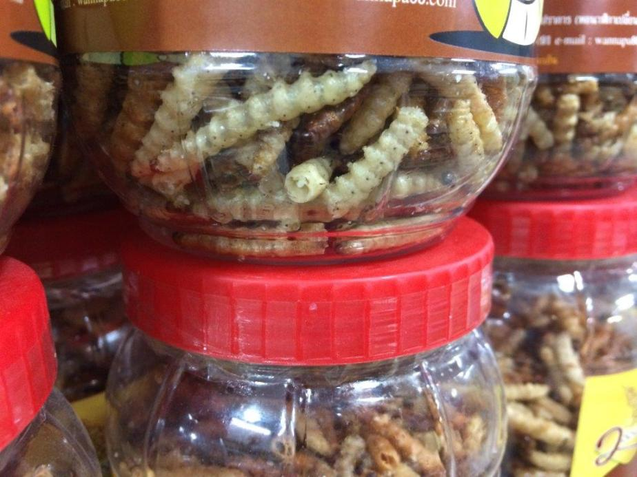 At snack shop. Crispy worms anyone?