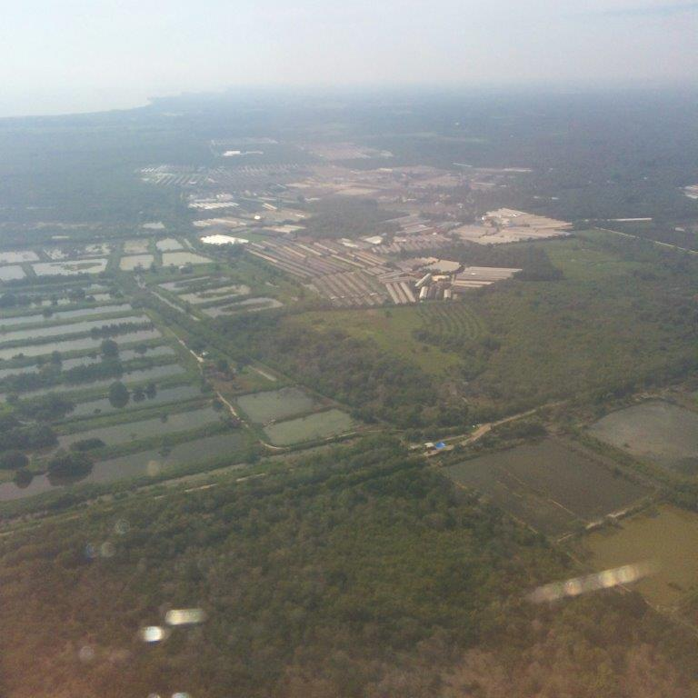 Landing Medan. Many farms.